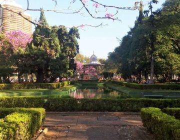 8 opções de praças e parques de BH para aproveitar a família